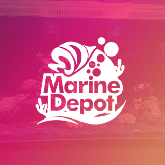 Marine Depot - Case Study